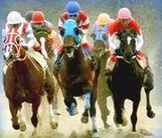 佐賀競馬所属騎手を応援する隊