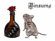 binzume