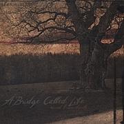 A Bridge Called Life