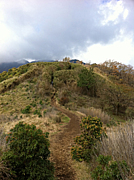 TOKYO登山サークル