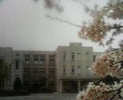 西尾小学校