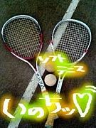 ソフトテニスin墨田・葛飾