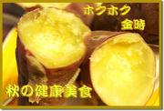 鳴門金時関原農園(サツマイモ)