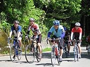 北信州を自転車で走ろう