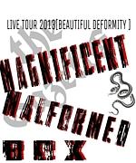 the GazettE Tour13 Project