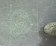 フィギュアスケートみんなの輪