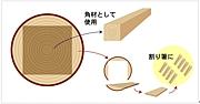 国産材「割り箸」&「マイ箸」族