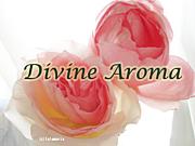 Divine Aroma