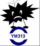 YM313