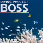 DIVING PROJECT BOSS