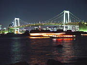 東京湾岸珊瑚礁