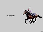 鬼の競馬予想 -推奨馬編-