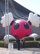 関東☆バレーボールチーム