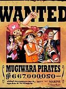 ★つるつる麦わら海賊団★