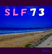 SLF73