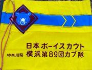 ボーイスカウト横浜第89団