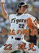 阪神タイガース[虎きち]