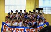 ★SWIFT^・ω・^DEER★