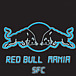 Red Bull MANIA in SFC