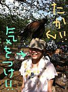 ミユキ!!!!!っ