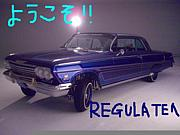 【GARAGE REGULATE】