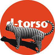 d-torso