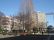 早稲田大学理工学部
