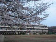 水海道市立菅原小学校