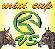 ☆MRA mixi CUP☆