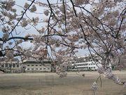 福島東高校(男子高の部)