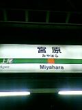 高崎線宮原駅の方集まって!
