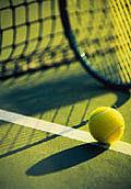 砥部テニス