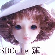 SDCute蓮