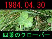 1984.04.30 四葉のクローバー