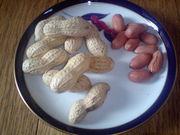 「ピーナッツ」といえば八街産!