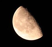 月光撮影部