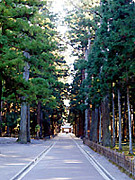 古神道★杜の都