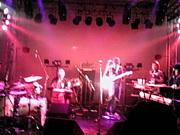 バンドのラクダ