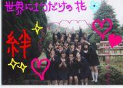 ★英和っ子2004☆