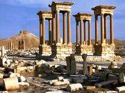 パルミラ ( Palmyra )
