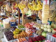 日本では珍しい野菜・果物