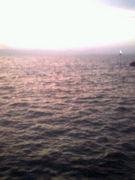 名古屋で釣り会議