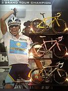 全日本自転車競技部