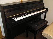 プチピアノサークル仙台(LS)