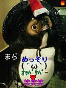 めっそり(´ω`)オッペケペ