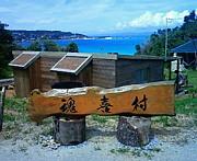 癒しの島沖縄