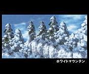 ホワイトマウンテン 吹雪の谷