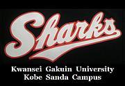 関西学院大学 Sharks