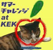 サマーチャレンジ@KEK