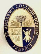 St.Andrew's College Dublin